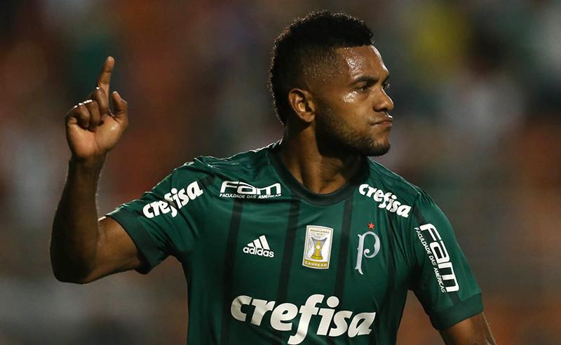 Palmeiras Borja