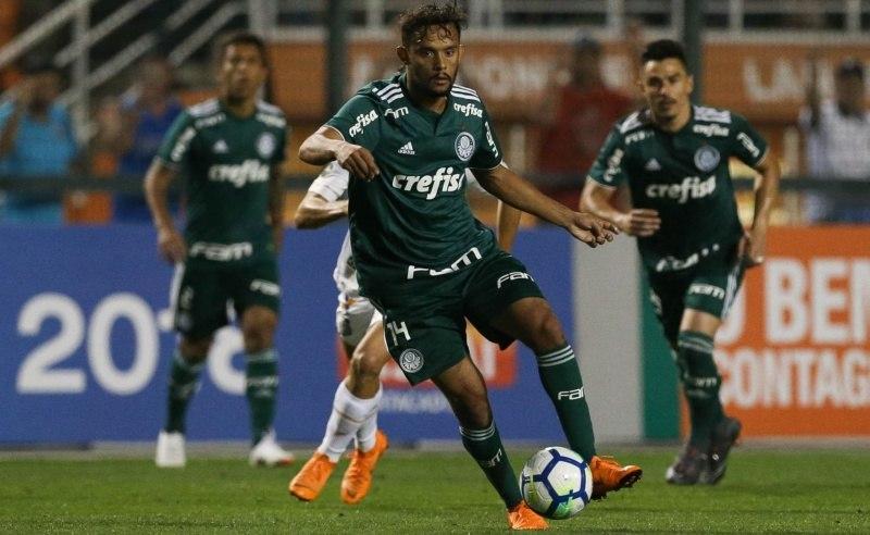 Prognóstico do jogo entre Fluminense e Palmeiras da 15ª rodada do Campeonato Brasileiro da Série A 2018.