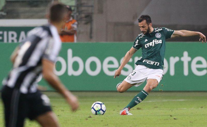 Edu Dracena do Palmeiras