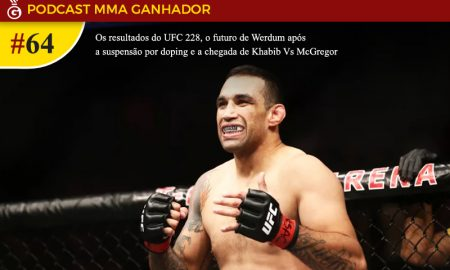 Fabricio Werdum - UFC