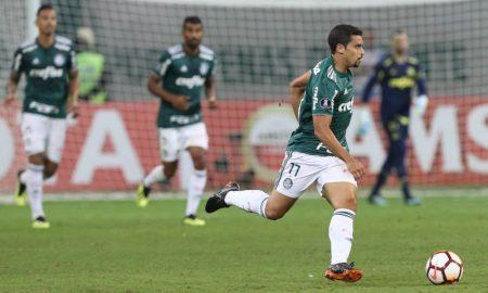 Jean do Palmeiras