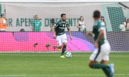 Luan do Palmeiras