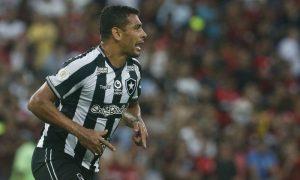 Diego Souza do Botafogo