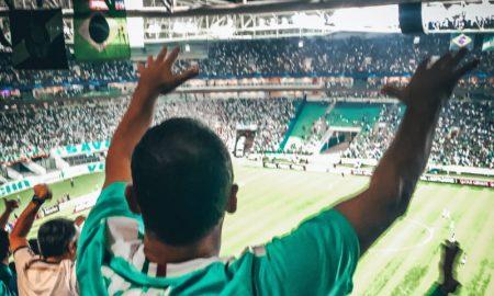 Torcedor Palmeiras