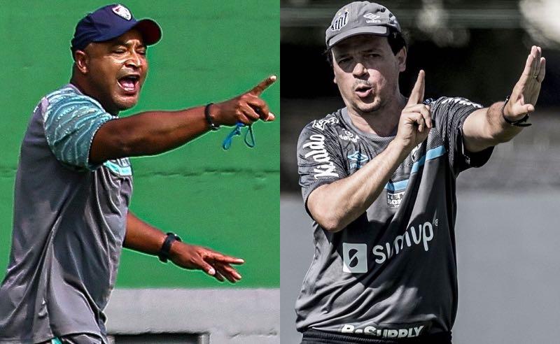 Os técnicos Fernando Diniz e Roger